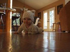 Photobomb-Baby Cat