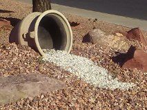 Arizona yard pot taken by Marie Leaf