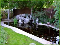 backyard ponds | Backyard Koi Pond