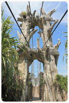 sentosa island bridge    http://singaporeholidayguide.com/sentosa-island-holidays/