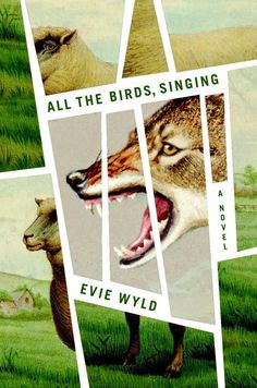 All the Birds, Singing by Evie Wyld // Amazing illustrated book cover, with wolf and sheep, Design by Joan Wong (plus 31 more of the most beautiful book covers Best Book Covers, Beautiful Book Covers, Cool Books, New Books, Typographie Design, Buch Design, Publication Design, Design Graphique, Print Magazine