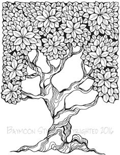 1000 images about ZenDoodle Trees