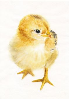 Chick by AquaColour on Etsy, $20.00