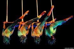 """Por hacer - Ir a """"cirque du soleil""""!!!! :D"""