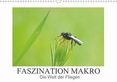 Faszination Makro - Die Welt der Fliegen - CALVENDO