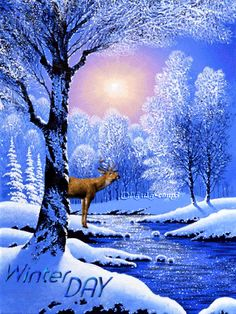 gif photo by Winter Magic, Winter Fun, Gif Pictures, Winter Pictures, Gifs, Happy Day Gif, Happy Friday, Animated Christmas Pictures, Norway Christmas