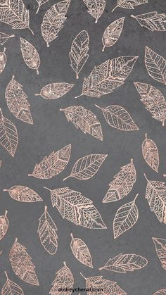 Rose gold hand drawn boho feathers hand drawn grey industrial concrete cement by Audrey Chenal wallp&; Rose gold hand drawn boho feathers hand drawn grey industrial concrete cement by Audrey Chenal wallp&; Gold Wallpaper Background, Rose Gold Wallpaper, Trendy Wallpaper, Cute Wallpaper Backgrounds, Pretty Wallpapers, New Wallpaper, Flower Wallpaper, Feather Wallpaper, Boho Backgrounds