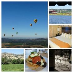 napa valley collage