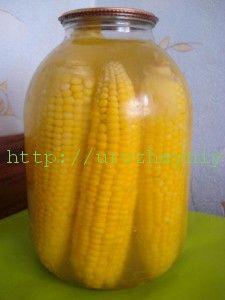 Кукуруза на зиму. Рассол на 5 л воды: 150 гр. соли и 150 гр. сахара. На 3-х литровую банку нужно 1,5 л воды и по 45 грамм соли и сахара