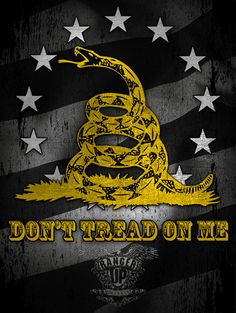 115 Best Dont Tread On Me Images In 2019 Art Projects Dont Tread