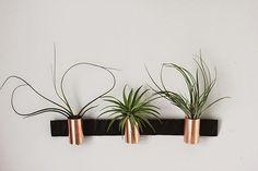 Poppytalk: Minimal Copper Airplant Holders
