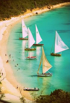 Boats and Beaches