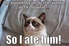 """The groundhog said six more weeks of winter, so I ate him."" - Grumpy Cat Meme"