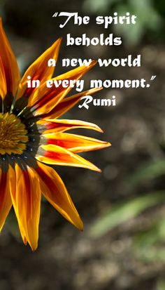 """The spirit beholds a new world in every moment."" Rumi -- On image taken at TUCSON BOTANICAL GARDENS by F&J McGinn – Explore touchstone quotes on discovering the sacred at http://www.examiner.com/article/learning-to-find-the-sacred-life"