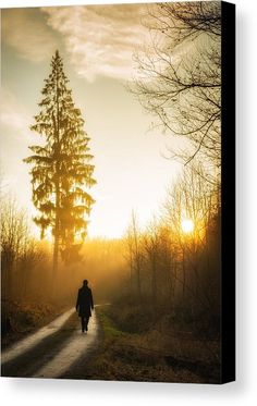 Forest Sunset Canvas Print for sale. Warm and beautiful evening light, sunset is waiting. A person is walking on a forest path, beautiful tree in the background. Lovely landscape in the Nature Park Schönbuch in Germany. The image gets printed on one of our premium canvases and then stretched on a wooden frame, click through and check out your options. 30 days money back guarantee. Matthias Hauser - Art for your Home Decor and Interior Design.