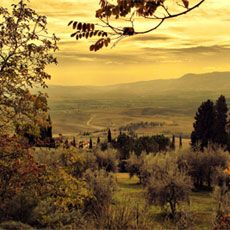 WINTER IN TUSCANY - Off-season 4 Days/4 Nights Private Tour of Tuscany, Italy