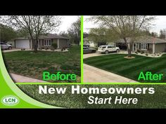 How-to Fix Your Ugly Lawn With This Single Lawn Application - YouTube