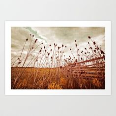 Scattered Thoughts of Yesteryear Art Print by Laura George - $17.00
