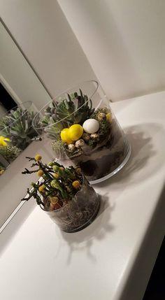 Forår og påske - www. Terrarium, Table Decorations, Tips, Nature, Easter Activities, Lawn And Garden, Terrariums, Naturaleza, Nature Illustration