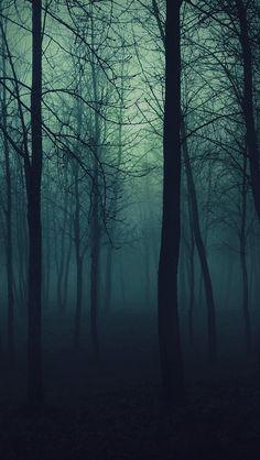 Dark-Forest-iphone-5-wallpaper-ilikewallpaper_com.jpg (640×1136)