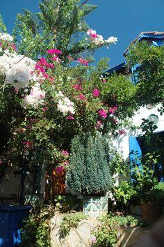 Kas, Antalya