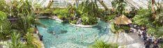 Een dagje zwemmen bij Center Parcs De Eemhof is alles wat je van een heerlijk dagje weg verwacht!