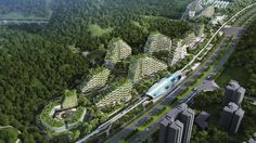 In an attempt to tackle air pollution China is planning on building what it says is the first forest city.