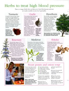 Herbs: #Herbs to Treat High Blood Pressure.