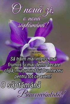 Phonetic Alphabet, Emotional Affair, Butterfly Quotes, Jesus Loves You, Am Meer, Day Wishes, God Jesus, Months In A Year, Spiritual Quotes