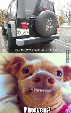 Wow I laughed so hard at this lol phteven? Funny Dogs, Funny Animals, Funny Memes, Car Memes, Funny Fails, Haha, Charlie Chaplin, I Love To Laugh, Tarzan