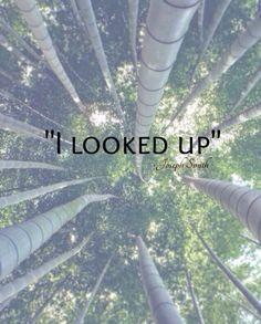 We should always look up