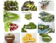 Regular Size: lettuce, bunching onions, celery, broccolini, kale, radishes, spinach, sugar snap peas, apples, lemons, avocados     Small Size: lett