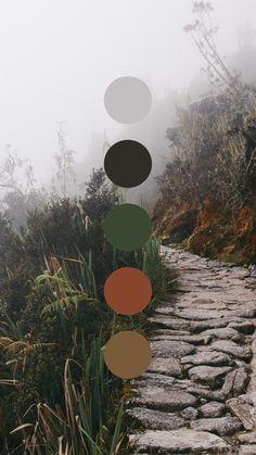 what is color psychology Color Schemes Colour Palettes, Fall Color Palette, Colour Pallette, Color Combos, Rust Color Schemes, Pantone Colour Palettes, Pantone Color, Color Trends, Color Psychology