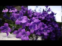 ▶ الرعيل الأول ( هي جنة طابت وطاب نعيمها ) - YouTube