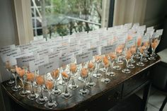 Idea Alert! Champagne glasses did double duty as both favors and place card holders at Dana and Cynthia's wedding.    Photo credit: Hudson River Photographer    Click on the image to see from Dana and Cynthia's beautiful day.