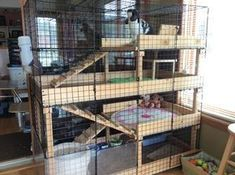 Diy Bunny Cage, Bunny Cages, Rabbit Cages, House Rabbit, Rabbit Cage Diy, Indoor Bunny House, Indoor Rabbit Cage, Rabbit Hutch Plans, Rabbit Hutches