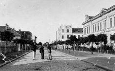 městská zeleň na Ovčárecké ulici, před rokem 1920