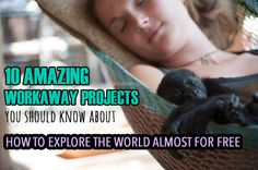 10 amazing Workaway projects you should know about: How to explore the world almost for free - Dreaming and Wandering