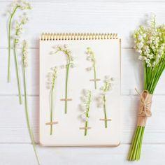 Wreaths, Decor, Herb Box, Coloring Pages, Decoration, Door Wreaths, Deco Mesh Wreaths, Decorating, Floral Arrangements