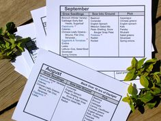 Southern Hemisphere cool temperate planting pocket guides! Printable!