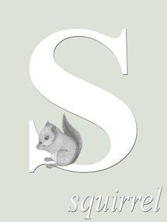 Alphabet Print Nursery Baby Squirrel 5 x 7  by ScubamouseStudiosJr, $12.00