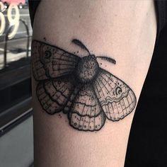 A Bogong Moth by Nicholas Koster - @grim_nicholas - Lygon Street Tattoo Co
