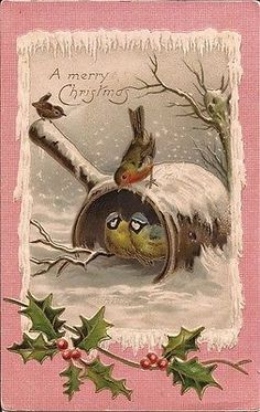 LITTLE BIRDS at CHRISTMAS - VINTAGE 1907 ARTIST DRAWN