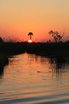 Sun over the Okavango Delta, Botswana. Been there. done that.