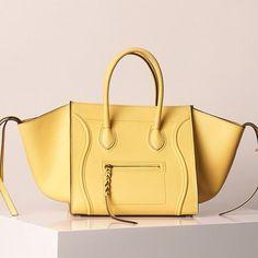 Celine bag spring 2013
