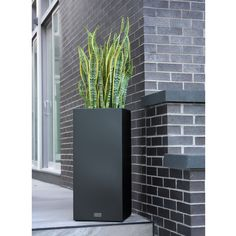 Veradek Shop is the leading manufacturer of indoor and outdoor planters, modern planters, garden pots in New York, US. Order best modern planters & pots for your home and garden. Corten Steel Planters, Tall Planters, Square Planters, Outdoor Planters, Outdoor Gardens, Outdoor Decor, Pedestal, Styrofoam Insulation, Decor Pillows