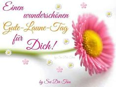 Haha süß                                                       … Happy Weekend, Happy Day, Any Book, Birthday Greetings, Book Recommendations, Words Quotes, Special Day, Flower Art, Good Morning