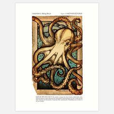 Erin J. King: Mother Octopus Print 8x10