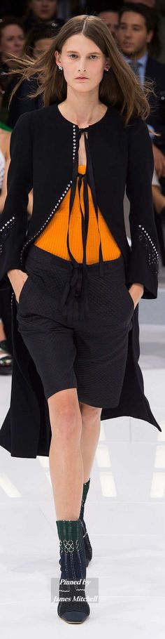 Christian Dior Collection  Spring 2015 Ready to Wear
