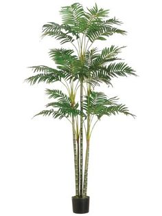 6' Areca Tropical Silk Palm Tree w/Pot (case of 2) -- Click image to review more details.